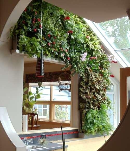 Зимние сады в доме или квартире. обсуждение на liveinternet .