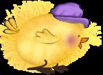 Цыплята картинки