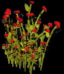 Lug_Grass_Flower (38).png