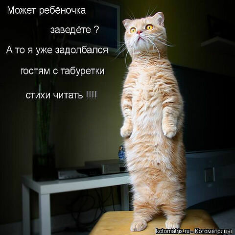 http://img-fotki.yandex.ru/get/5646/194408087.1/0_8db65_91425ba4_XL.jpg