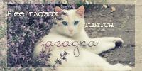 http://img-fotki.yandex.ru/get/5646/198668810.0/0_a5dc7_e1adc845_orig
