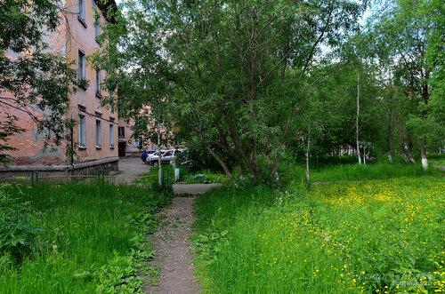 Фотография Инты №7841  Социалистическая 6 и Мира 5 21.06.2015_14:53