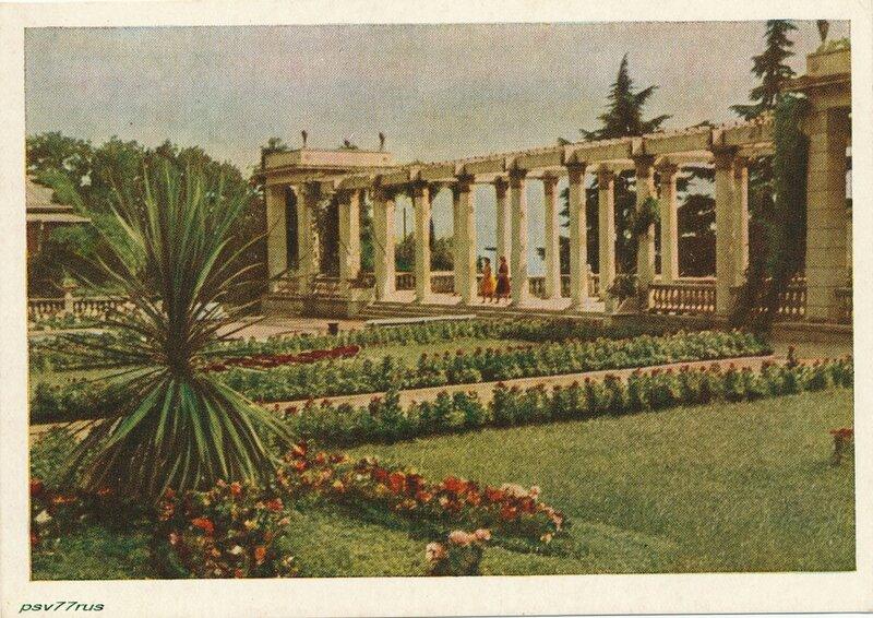 В Никитском ботаническом саду имени В.М.Молотова