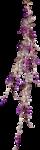 Grapes-GI_DarknessSparkles.png