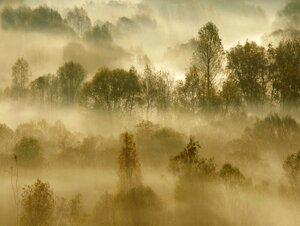 Осенние туманы Сходненской чаши...