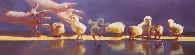 Grace Paleg chicks.jpg
