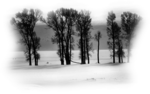 MKM 2015 JANUARY SERIES_WINTER_2_T2.png