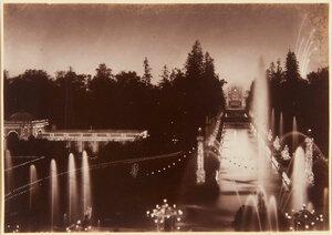 04. Сады, освещенные в ночное время