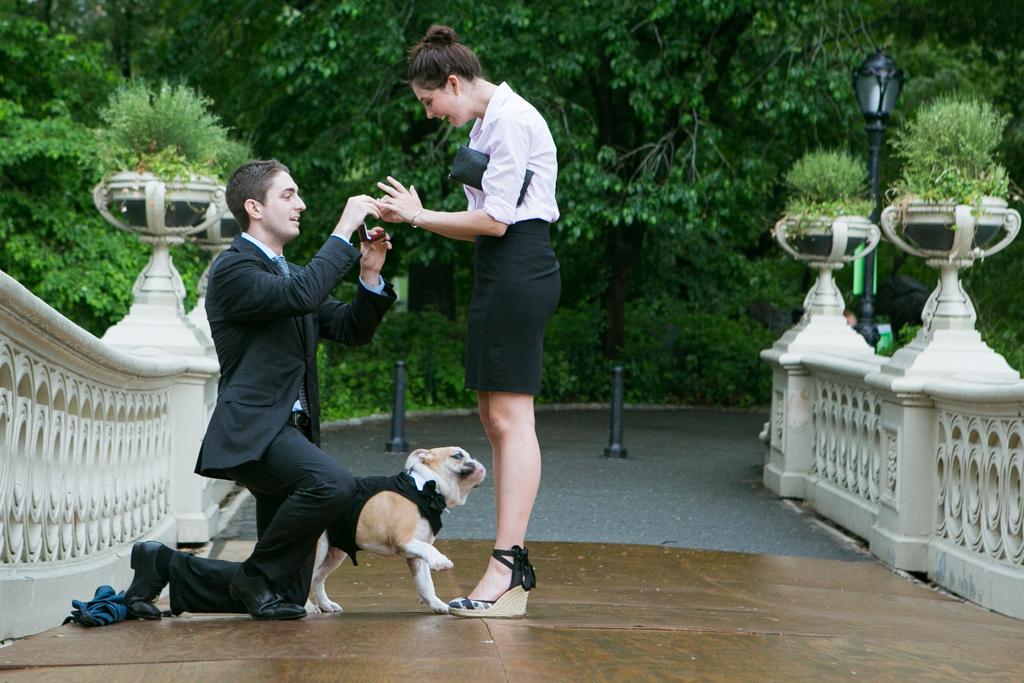 Das Aufgebot zur Eheschließung