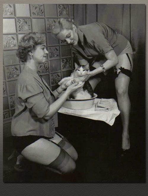 Фото девушки ласкающей свою бритую киску 26 фотография