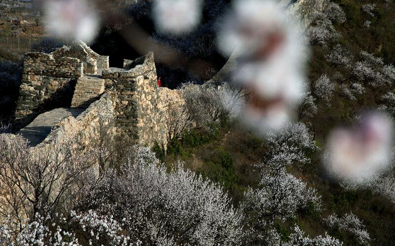 Чудесные виды Великой стены в начале весны 0 82289 b44b3f0 XL
