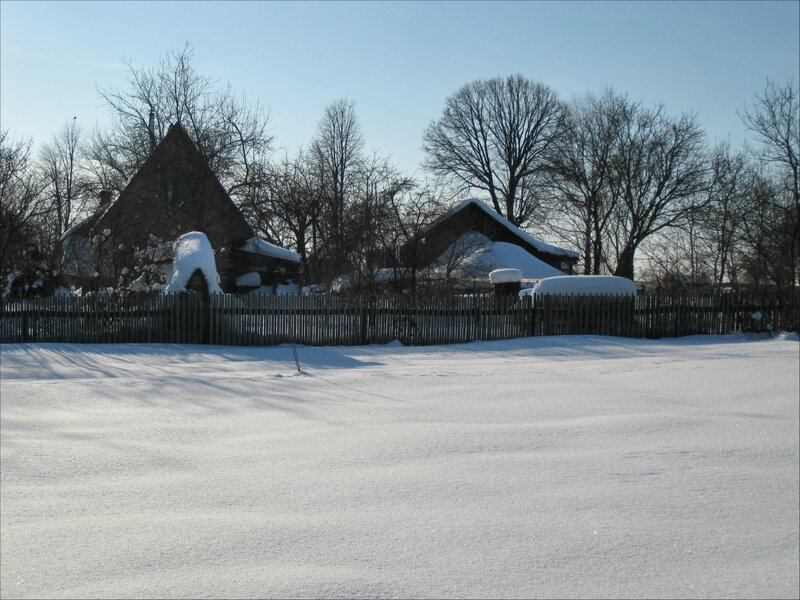 Дома на окраине Голенищево