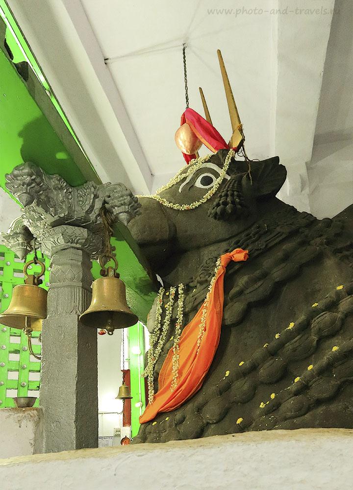 18. Храмы Бангалора. Нанди