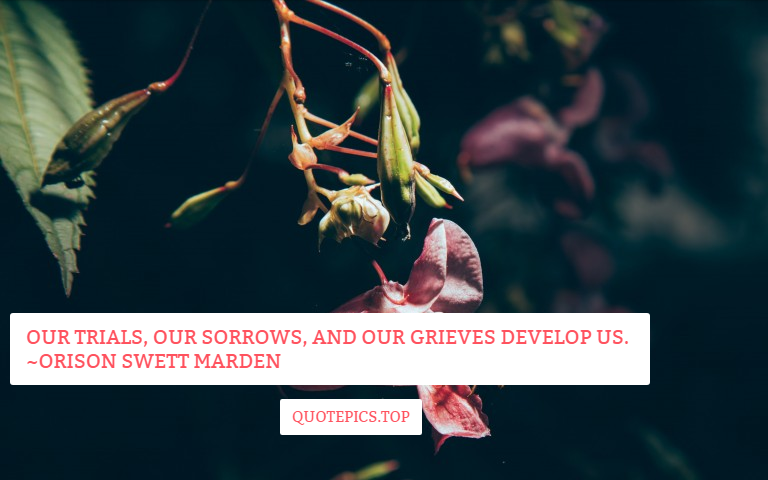 Our trials, our sorrows, and our grieves develop us. ~Orison Swett Marden