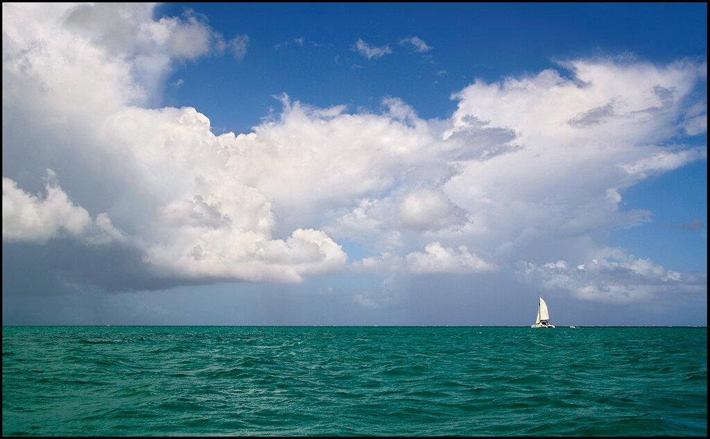 В море.jpg