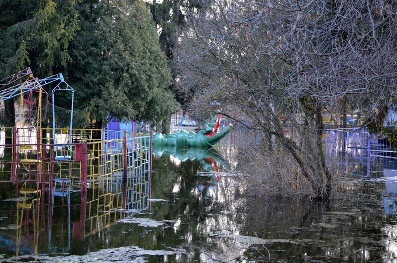 Луцкий парк весной