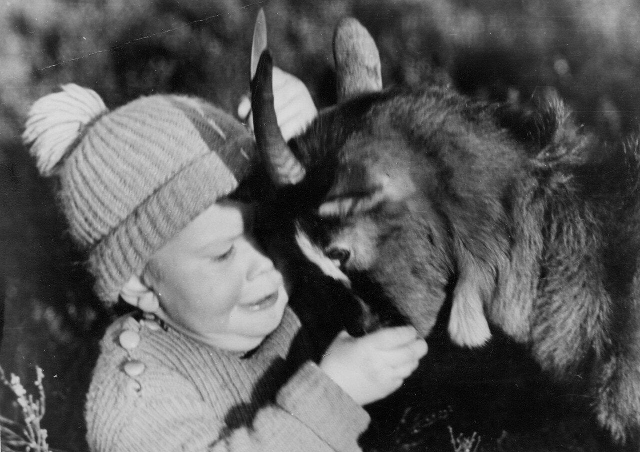 Мальчик пробует свои силы с козой