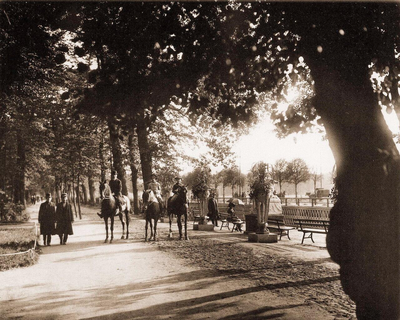 Конные прогулки в Летнем саду