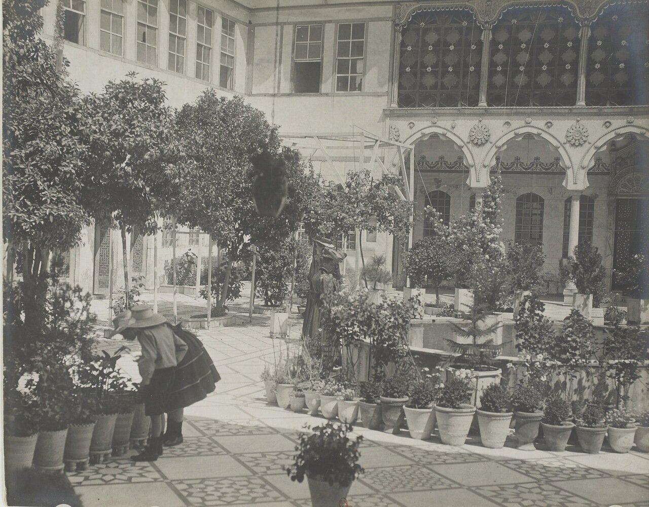 Сирия. Дамаск