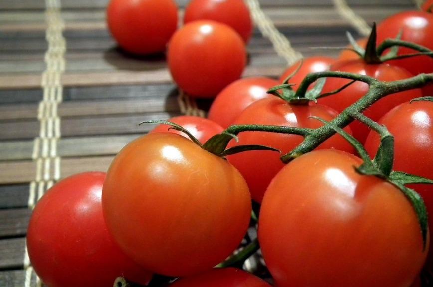 Россельхознадзор: Только три турецкие компании всостоянии поставлять томаты в РФ