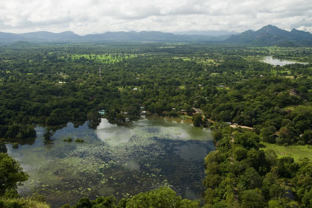 Шри-Ланка. Сигирия. (Malcolm Browne)