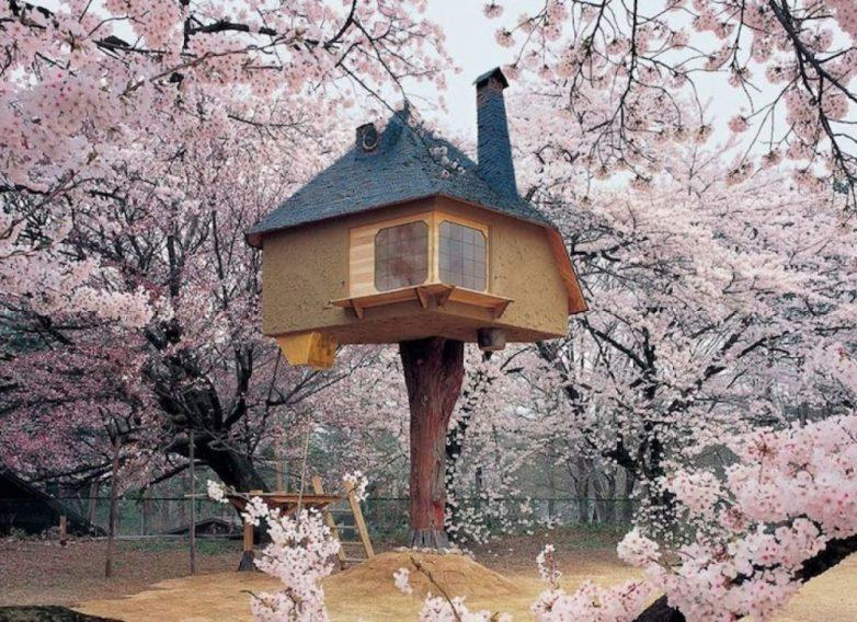 15. Домик на дереве, Хокуто, Япония