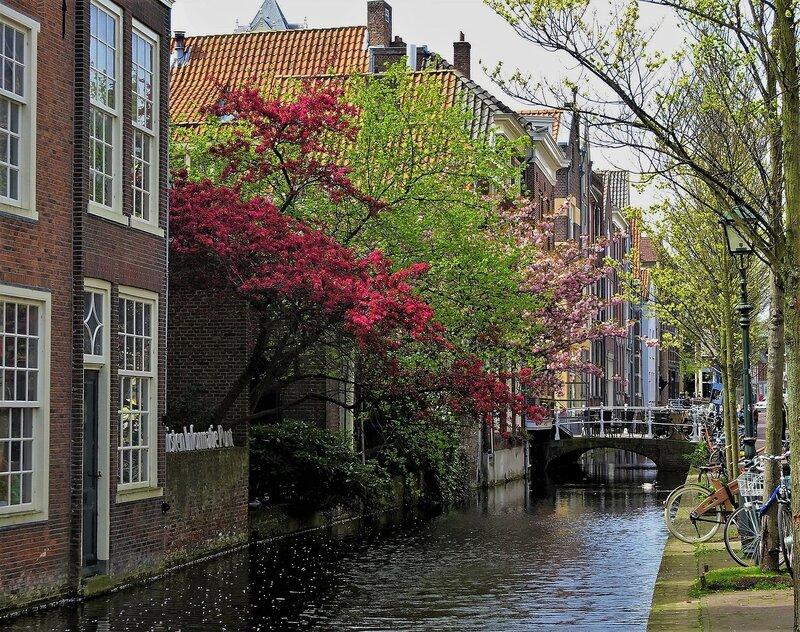 Делфт (Нидерланды)