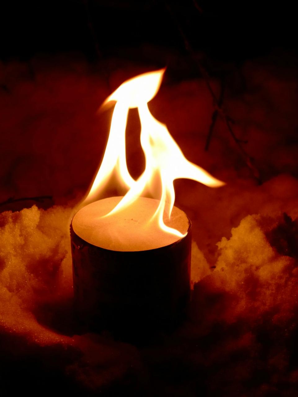 огонь туалетная бумага фото 3