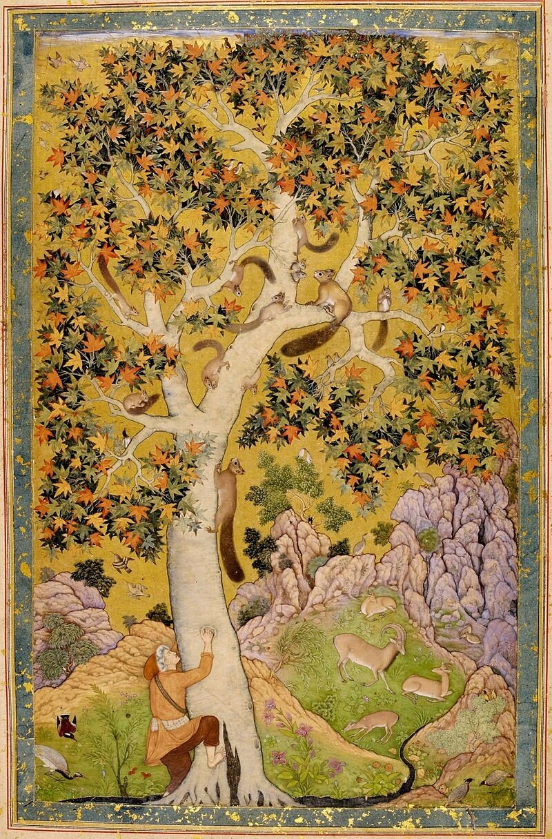 6Abu'l_Hasan_Squirrels_in_a_Plane_Tree,_ca__1610,_India_Office_Library_and_Records,_London.jpg