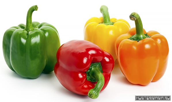 Болгарский перец. Состав, свойства и польза болгарского перца