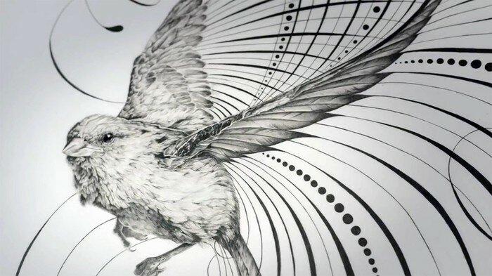 рисунки Джейка Вайдмана