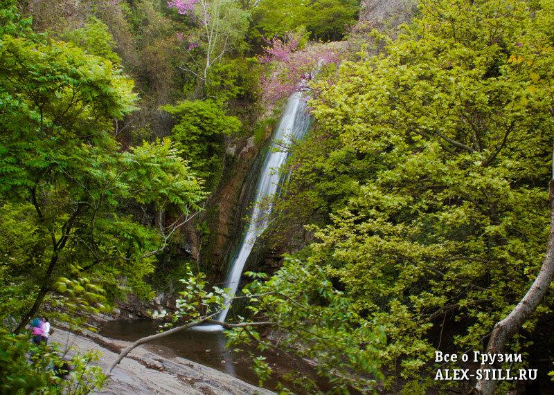 Большинство посетителей приходят в сад ради водопада