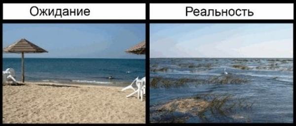 Летний отдых: ожидание и реальность