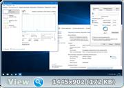 Windows 10 Pro 14393.447 x86-x64 RU PIP