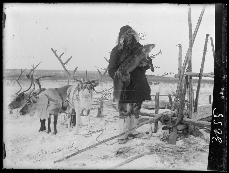 Siberia-Century-100-year-photos-fox.jpg