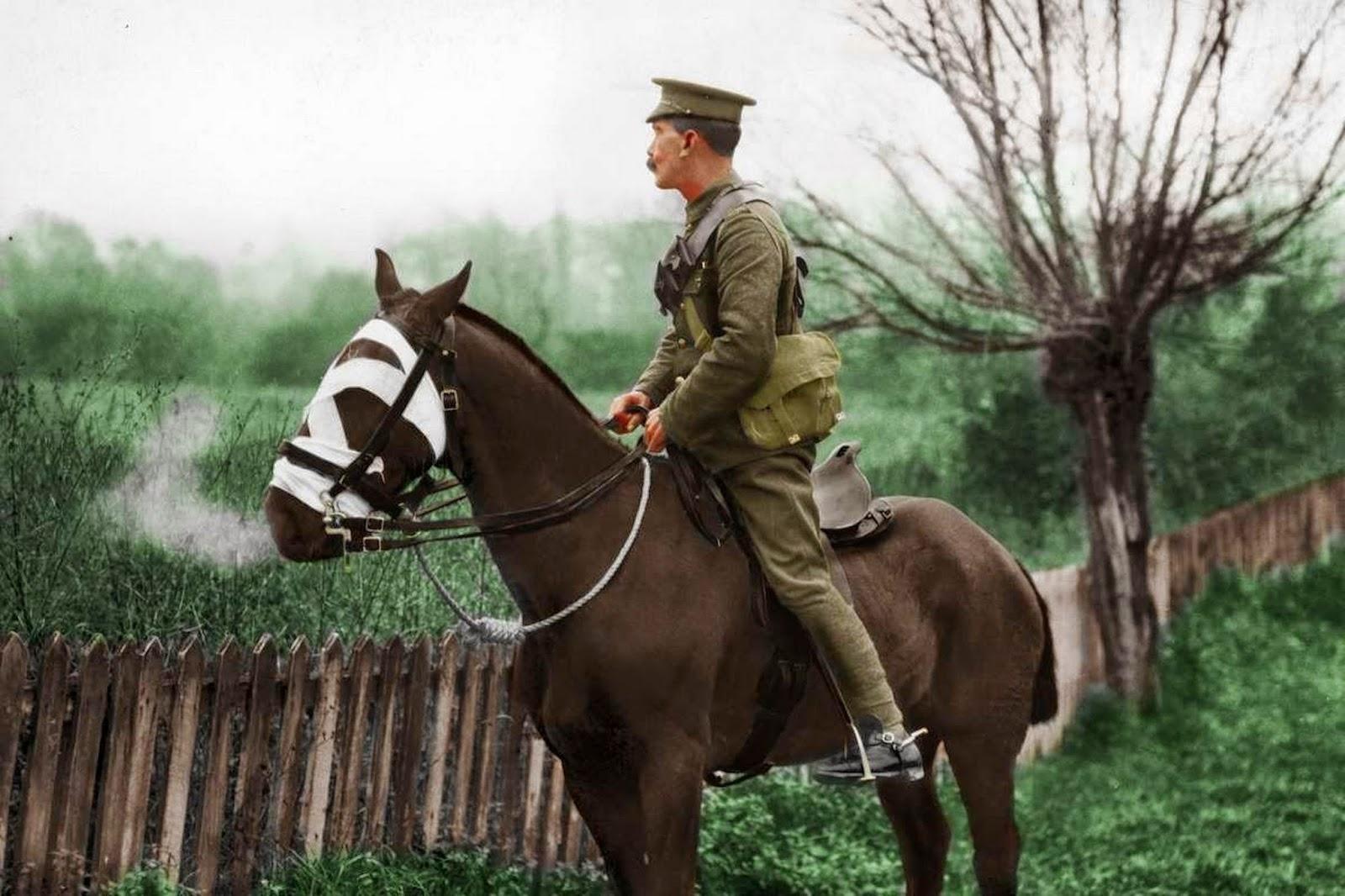 World War One Images Transformed into Color (5).jpg