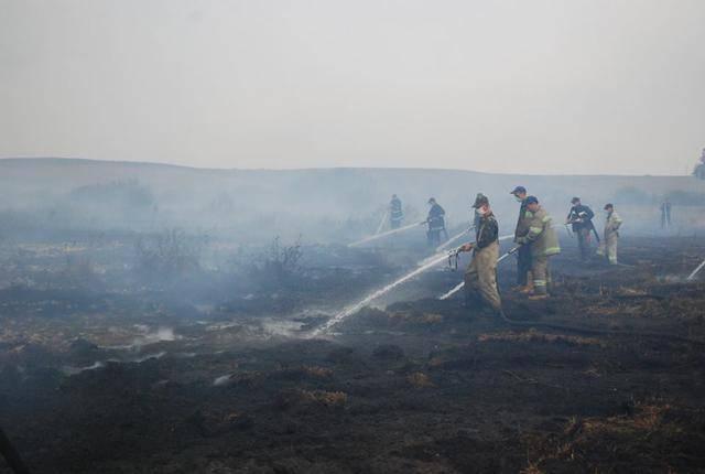 За сутки спасателям не удалось потушить пожар торфа подо Львовом: 1 га до сих пор в огне. ВИДЕО+ФОТО