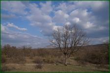 http://img-fotki.yandex.ru/get/56796/15842935.467/0_f55f8_759c4511_orig.jpg
