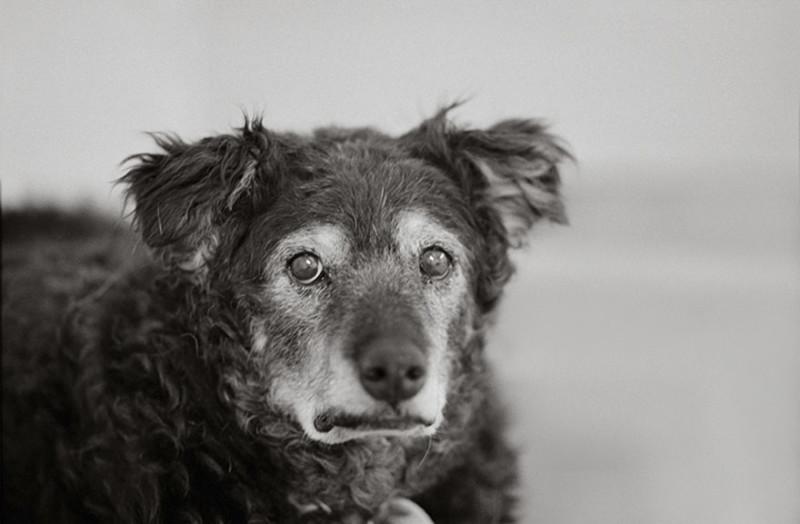 Карли, 14 лет, Канаб, Юта.