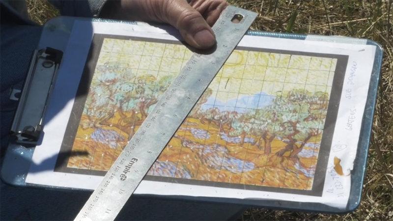 Фермер высадил на своем поле картину Ван Гога!