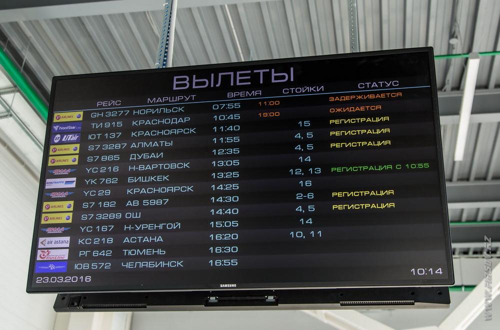 Novosibirsk_spotting 22.JPG
