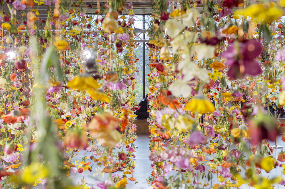 To celebrate spring, London-based artist Rebecca Louise Law  ( previously ) has placed 30,000 live f