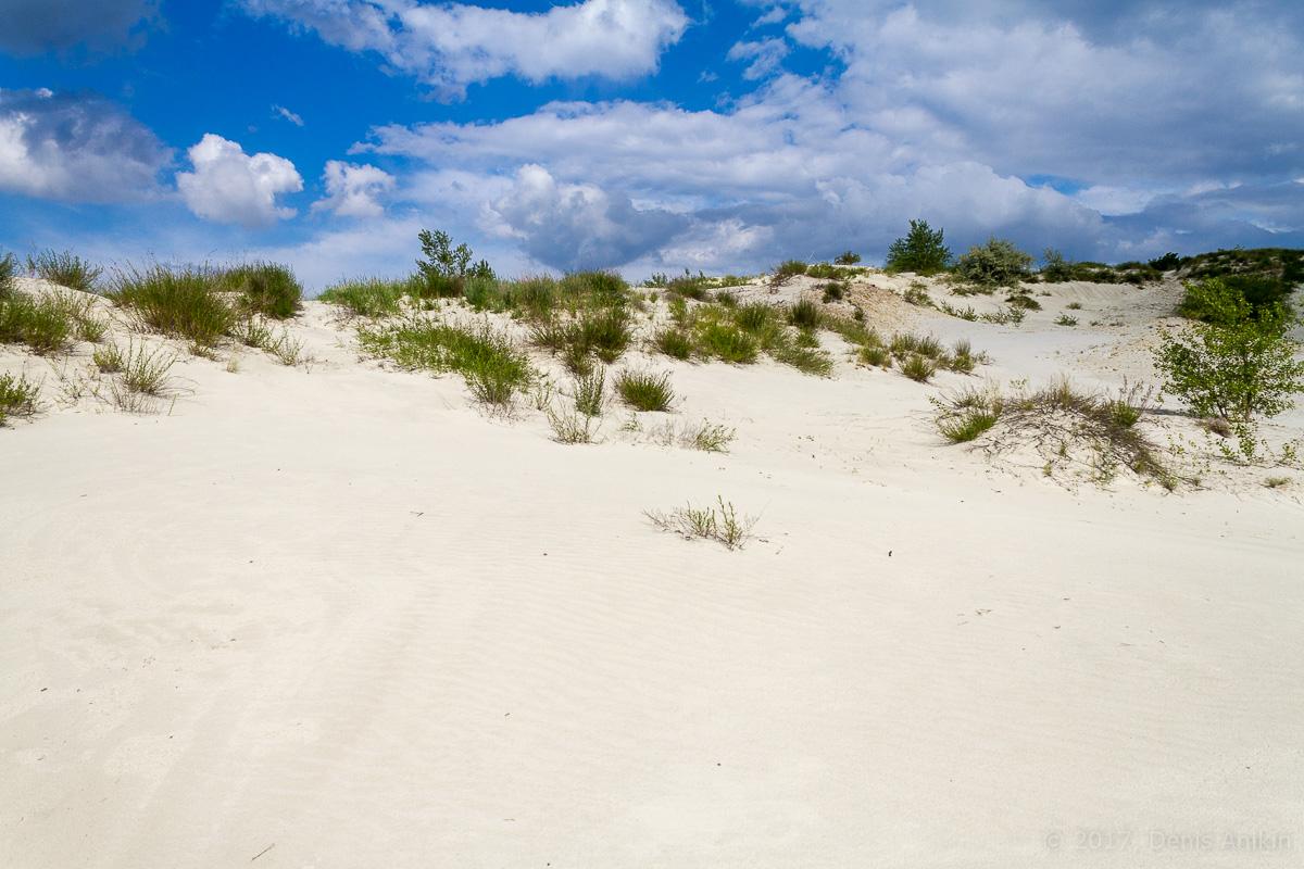 камышинский песчаный карьер фото 11