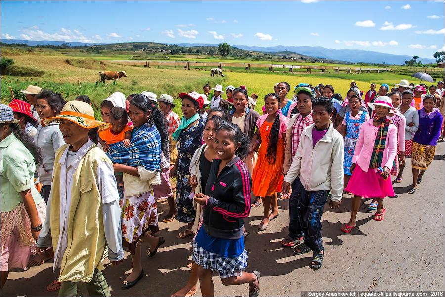 Мадагаскарская свадьба