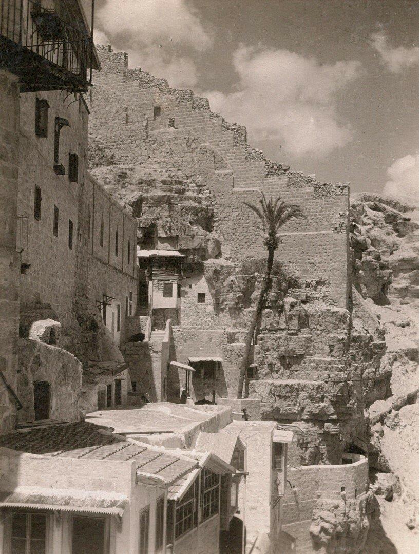 Кедронская долина. Монастырь Саввы Освященного.  Пальма Святого Саввы