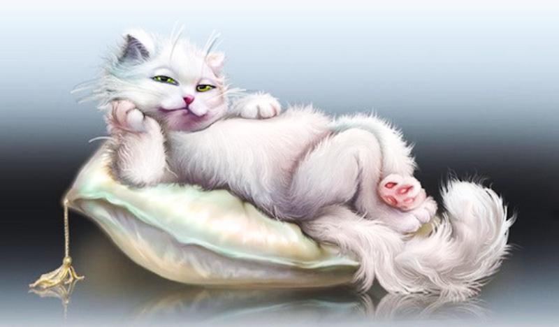 кошки-кошки-1.png