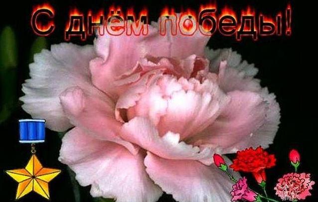 Открытка С Днем Победы! 9 мая  Гвоздики открытки фото рисунки картинки поздравления