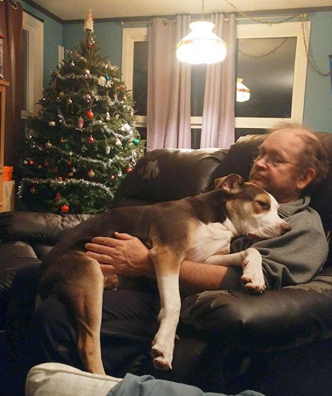 © TheRealRyan24  Сначала онсказал: «Янехочу собаку», потом: «Нам ненужна вторая собака!» Д