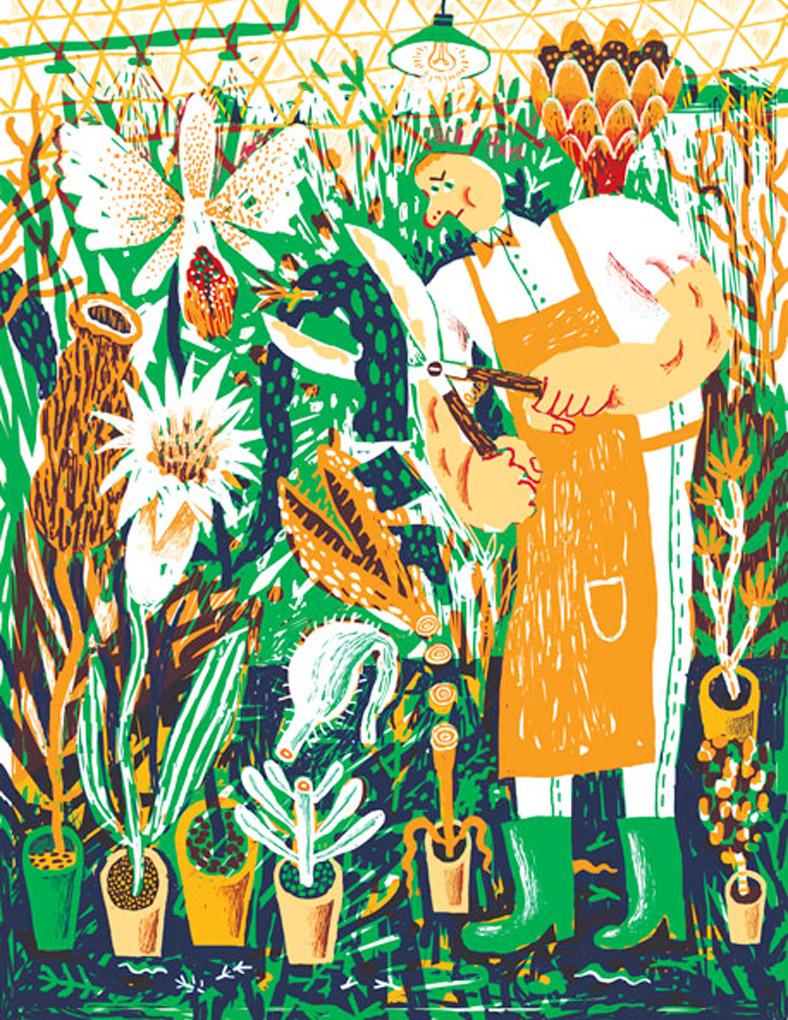 As ilustracoes cheias de cor de JooHee Yoon