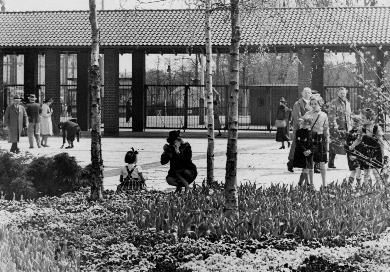 Гамбург.  Народ в парке